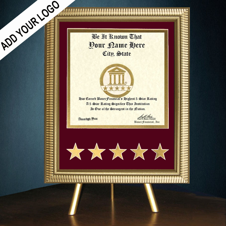 5-Star Gold-Framed Recognition Award in Crimson Matting on top of a gold table top easel