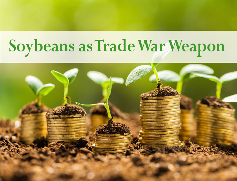 Soybeans as Trade War Weapon